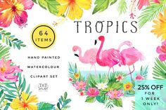 Tropics Watercolour Set - 25% off by Twigs and Twine on @creativemarket
