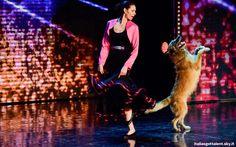 Lucy e il cane Deril conquistano il pubblico di Italia's Got Talent e i quattro giudici: Luciana Littizzetto, Claudio Bisio, Frank Matano Nina Zilli.