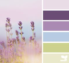 lavender hues - color scheme from Design Seeds Colour Pallette, Color Palate, Colour Schemes, Color Combos, Design Seeds, Shabby Chic Colors, Color Swatches, Color Theory, House Colors