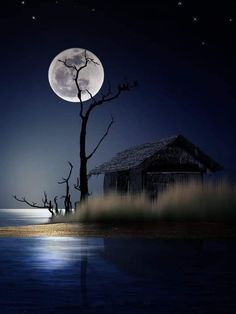 Moonlight Photography, Moon Photography, Amazing Photography, Night Sky Painting, Moon Painting, Beautiful Moon Pictures, Well Images, Shoot The Moon, Good Night Moon