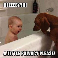 EVERYBODY NEEDS PRIVACY!!! XD