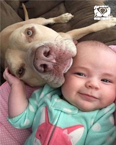≡ Photos That Prove Every Kid Needs a Pet ➤ Brain Berries Dogs And Kids, Animals For Kids, Cute Baby Animals, I Love Dogs, Animals And Pets, Funny Animals, Pet Shop Boys, Sweet Dogs, Nanny Dog