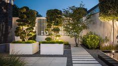 buitenhaard-buitenkeuken-Design-garden-Design-met-glas-Design-tuinontwerp-doorkijkzwembad-Exterieurontwerper-fitness-in-de-tuin-Gardendesign.jpg