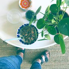 """E R I K J E S P E R S E N (@erikjespersen) på Instagram: """"Kvällsmat (mat som äts på kvällen. Inte alltid näringsrik)"""" kvällsmat middag blommor elefantöra flingor"""