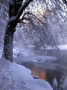 Particularly beautiful sight: Winter landscape on a small river that is not yet frozen.