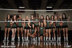 Volleyball team photo idea. Through the net.