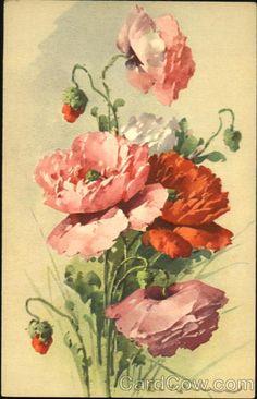 Розовые цветы C. Klein