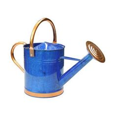 Griffith Creek Designs Deluxe Watering Can Color: Blue