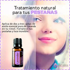Doterra Blends, Doterra Oils, Young Living Oils, Young Living Essential Oils, Doterra Essential Oils, Essential Oil Blends, Melaleuca, Health And Beauty Tips, Natural Cosmetics