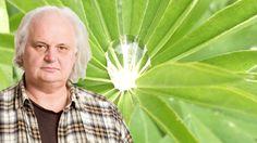 """Nu när odlingssäsongen är kommen bjuder Göran Greider på en filosofisk guide till alla gröna själar: """"För mig är varje trädgård magisk"""""""