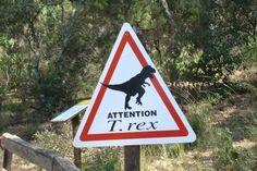 Tyrannosaures ? Jurassic Park !!!