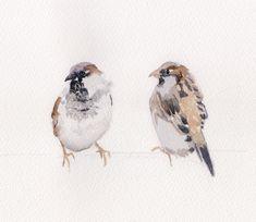 Sparrows by Dawn Minto Bird Paintings, Wildlife Paintings, Animal Paintings, Sparrow Bird, Sparrows, Bird Drawings, Bird Art, Contemporary Artists, Farm Animals