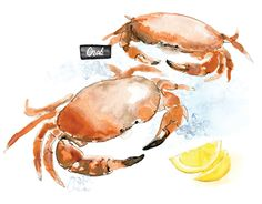 """Check out new work on my @Behance portfolio: """"""""Seaside Delights"""" Editorial Illustrations""""…"""