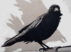 black-crow.jpg