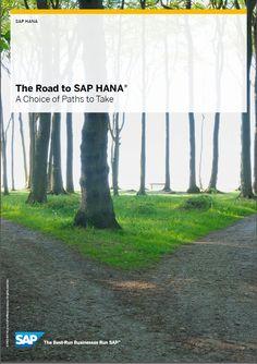 The Road to SAP HANA® A Choice of Paths to Take