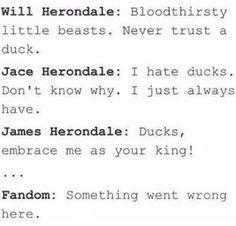 Ducks are evil creatures