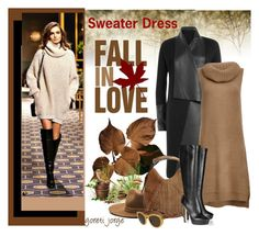 """Sweater Dress For Fall"" by goreti ❤ liked on Polyvore featuring Donna Karan, BB Dakota, rag & bone, Yves Saint Laurent, Jimmy Choo, Salvatore Ferragamo, women's clothing, women, female and woman"