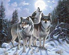 Gothic Coasters~Wolf Midnight Watcher Gothic Mystical Coasters~Fair Trade by Folio Gothic Beautiful Creatures, Animals Beautiful, Tier Wolf, Wolf Wallpaper, Wolf Pictures, Beautiful Wolves, Beautiful Artwork, Wolf Spirit, Wolf Howling