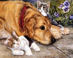 persis clayton weirs | Portraits de chiens & chats by Persis Clayton Weirs