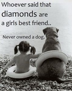Whoever said that diamonds are a girls best friend . . . never owned a dog. via The Enchanted Home