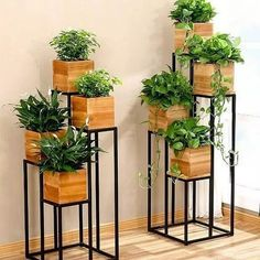 60 beautiful hanging plants ideas for home decor 51 Design And Decoration – Wohnaccessoires Easy House Plants, House Plants Decor, Home Plants, Interior Plants, Hanging Plants, Indoor Plants, Indoor Balcony, Indoor Herbs, Indoor Gardening