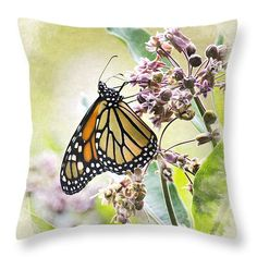 Monarch Butterfly Blank Note Card Throw Pillow by Christina Rollo