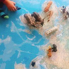 Nachmittags bei uns. Wir sortieren Scheichtiere nach ihrer Herkunft. Mehr Ideen unter www.kopfkonzert.com