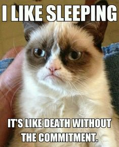 "Grumpy Cat-""I like sleeping. It's like death without the commitment."""