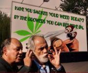 Cheech an Chong Marijuana Art, Medical Marijuana, Cannabis, Dave's Not Here, Cheech And Chong, Hey Man, Up In Smoke, Everything Funny