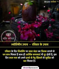 Vedic Mantras, Hindu Mantras, General Knowledge Facts, Gk Knowledge, Mantra For Good Health, Krishna Quotes In Hindi, Astrology Hindi, Detox Your Home, Sanskrit Mantra