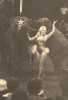 Animal trainer Mary Ruth Herriott Circus world performer Old Circus, Dark Circus, Circus Art, Circus Clown, Night Circus, Circus Theme, Circus Birthday, Birthday Parties, Vintage Circus Photos