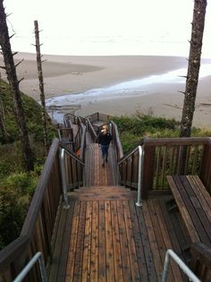 Love the Washington coast and have walked down these steps! One of my favorite places...Rialto, First, Second, and Third beaches.