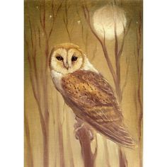 OWL limited edition print by PaintedMoonGallery on Etsy, $28.00