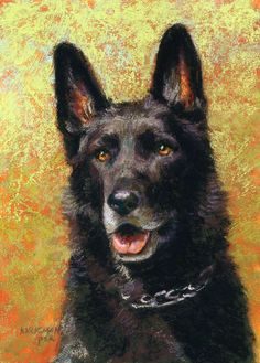 """Willie"" (pastel, 7x5 inches) sold Day 9 in my 30-Paintings-in-30-Days of November. This handsome fellow is a retired police dog. See progress shots on my blog: https://ritakirkman.blogspot.com/2016/11/day-9-willie-pet-portrait-commission.html"