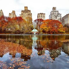 Autumn at the Conservatory Water in Central Park New York City