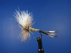 Wulff dry fly pattern