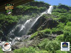 BARRANCAS DEL COBRE te dice dentro de la región de las barrancas existen algunas otras  como son la Barranca de Chínipas: 1 600 de profundidad. www.chihuahua.gob.mx/turismoweb