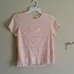 Size m mind code baby pink lace blouse Size m mind code baby pink lace blouse mind code Tops Blouses