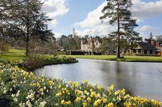Hever Castle in the spring #hevercastle #daffodils