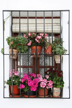 Now even prisoners can enjoy a flower-filled window! But seriously, what a great idea to soften a bar-covered window.
