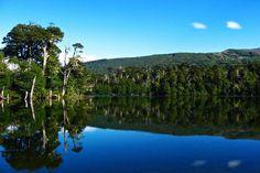 ¿Qué es y cómo funciona el Pase Anual de Parques Nacionales en Chile? - Recorriendo