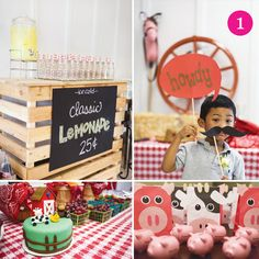 Farm animal birthday ideas