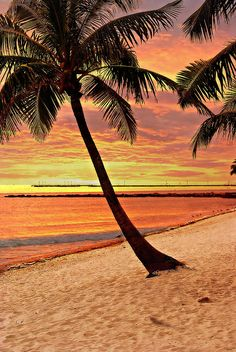 ✯ Key West Beach