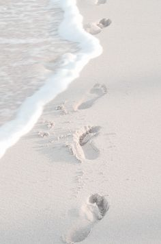 To appreciate the beach by walking through it, feeling the salty water over your feet and the soft sand underneath them Beach Aesthetic, Summer Aesthetic, White Tumblr, Picture Wall, Photo Wall, Beach Photos, Wall Collage, Aesthetic Pictures, Aesthetic Wallpapers
