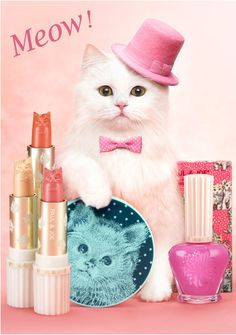 For those who loves cats with madness and passion... Why not bring in the form of makeup? SS look at the collection of Paul & Joe 2012 ♥