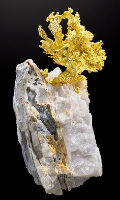 Gold on quartz matrix. Source: Clifornia, United States of America.