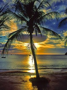 Sunset or sunrise in Isla Margarita, Venezuela. Love the gold and blue sky and the palm tree. Beautiful Sunset, Beautiful Beaches, Beautiful World, Beautiful Images, Dream Vacations, Vacation Spots, Vacation Places, Foto Picture, Belle Photo