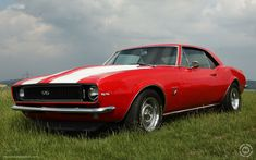 The Camaro's return completes a blessed baby boomer trinity of so-called pony cars, after reintroductions of the retro Ford Mustang and Dodge Challenger. Old School Muscle Cars, Old Muscle Cars, Best Muscle Cars, Chevy Camaro, Chevrolet Camaro Ss 1967, Camaro 2016, Cheap Muscle Cars, Modern Muscle Cars, Muscle Cars For Sale