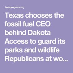 Texas chooses the fossil fuel CEO behind Dakota Access to guard its parks and wildlife Republicans at work: the fox guarding the henhouse