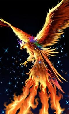 Operation Phoenix is a go on Planet Earth By Star Sister Astrology Hello, Beautiful, The cosmic web is alive with energy. Across the solar system,(. Phoenix Artwork, Phoenix Wallpaper, Phoenix Images, Dragon Artwork, Phoenix Rising, Dark Phoenix, Mythical Creatures Art, Magical Creatures, Tatoo 3d